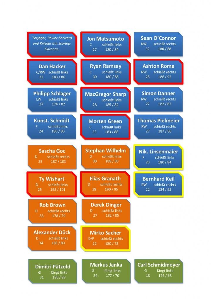 Infografik Wild Wings Team